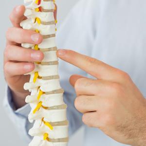 spine-300x300
