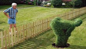 angry-landscaper